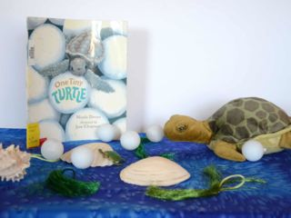 One Tiny Turtle - Kit at WCCRC's Library