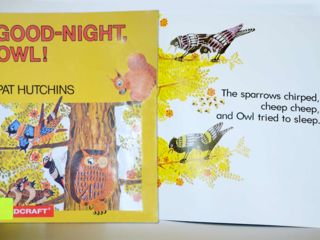 Good Night Owl Big Book